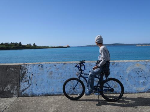 平良(ひらら)港<br /><br /> 彼のように30年ほど前までに沖縄に移住した人々がいる。沖縄闘争を闘った人たちで、新天地を求めて最近移住した人たちとは考え方がまったく違います。