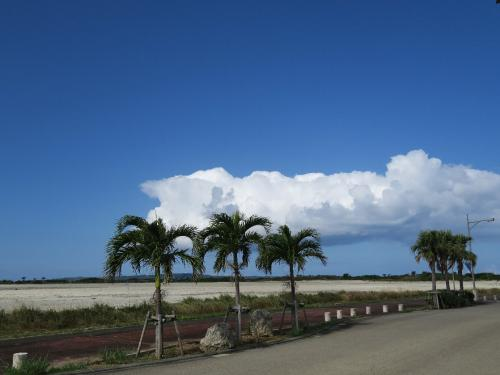 宮古島久松公園2<br /><br /> ・初春や宮古の空に黒い雲<br /><br /> ・患いもすめば宮古の雑煮かな