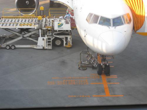 飛行機の機種毎に停まる位置が決まっているみたいです。<br />知らなかった。