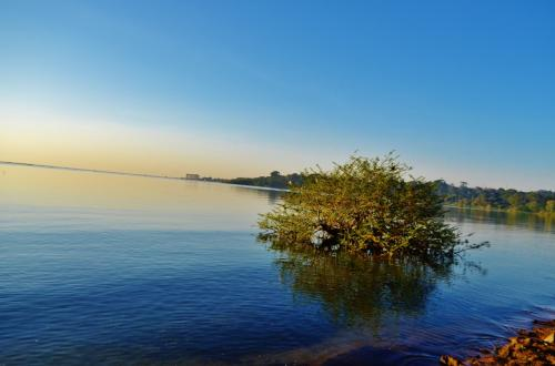 ビクトリア湖は世界で3番目に大きな湖だ。淡水湖で、ウガンダ、ケニア、タンザニアの三国に跨っている。