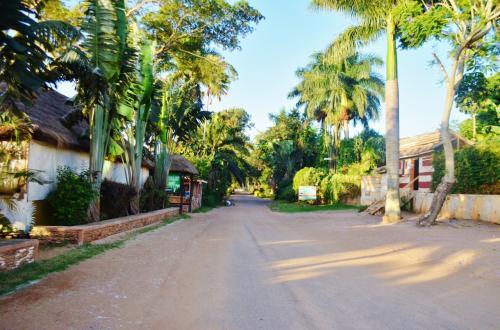 早朝からアカシアビーチホテル周辺を散策。周辺には他にも多くの宿泊施設があり、治安はとても良い。