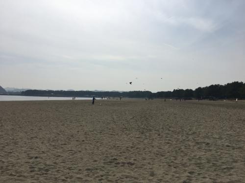 砂浜が広がるこちらが駅名にもある海の公園。<br />海水浴は流石に無理ですが、天気がいいこともあってそこそこの人出。<br />正月でもないのに、凧を上げている人多数いました。<br />凧あげるような広い場所が無いから、ここに集まるという事でしょうかね。<br />