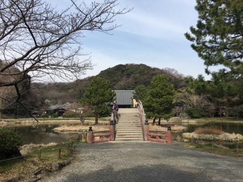 まずは称名寺を歩いてみます。<br />手前の橋には、やたらと池をのぞき込んでる人の姿が。