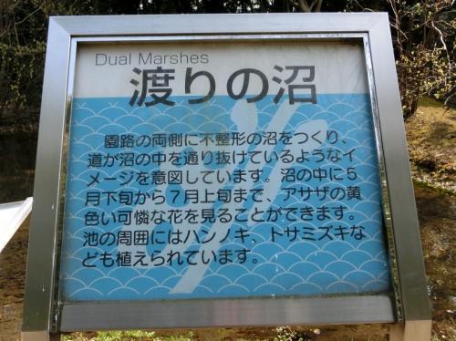天気予報では今年最高の気温(18~19℃)になると報じられていました。その予報を信じて、日本庭園前ゲート~中津道~上津道を通って「花の丘」を目指しました。<br /><br />「花の丘」のちょっと手前の左側に「渡りの沼」があり、沼の横に立看板がありました。看板を読むと「トサミズキ」という言葉が眼に入りました。<br /><br />「トサミズキ」?<br />花に無知なオッチャン、初めて聞いた名前でした。<br />