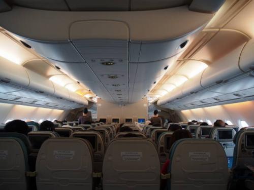 関空発の便(SQ619)は2階席がありました。<br />3-4-3の座席です。<br />羊之輔は2歳未満なので座席はなく母の膝の上ですが、運良く4人掛けの席にしてもらえたので、我が家は4席分ゆったり乗ることが出来ました。<br /><br />今回バリまでの往復で計4回飛行機に乗る訳ですが、この便が一番キレイで快適でした。