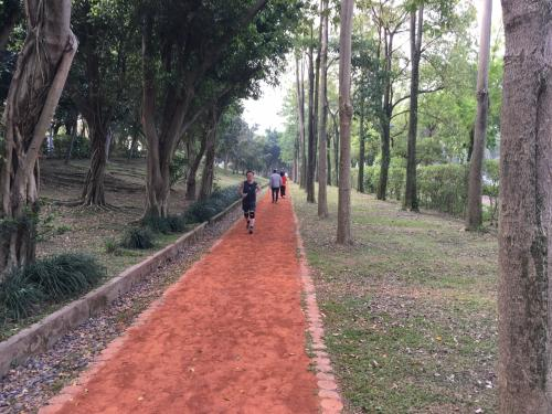 公園の外周には土?砂?チップ?な脚に優しいジョギングコースがあり結構な方々が走っていました。<br />走っている方意外に白人の方の率高し!<br />これも東京の芝公園、外苑辺りと似てますね。<br />公園内では大勢の方が太極拳?を楽しんでいました。