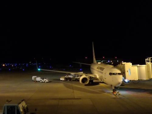 私たちを羽田へ連れて行ってくれる飛行機です。<br />よろしくね。