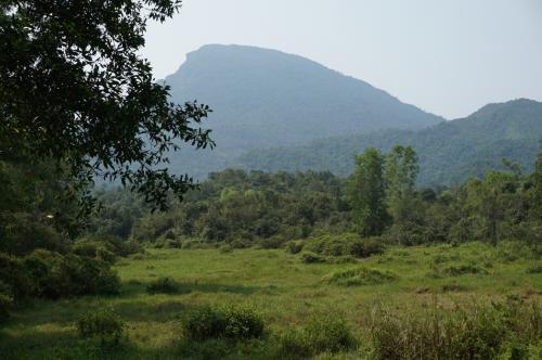 """遠くに見える大きな山は、マハーパルヴァタ聖山。<br />ミーソンとは、""""美しい山""""という意味だそうです。 なるほど、うなずけます。"""