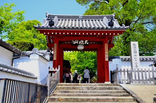 表門<br />今から約1200年前、この寺で歴史に残る2つの大きな出来事が起こっています。<br />一つは日本密教の原点を築いた空海と最澄の2大巨星がこの寺で最初の出会いを果たし、その後の日本仏教が大きな発展を遂げる礎となったことです。<br />もう一つは、長岡宮の造営長官 藤原種継の暗殺事件への関与を疑われた早良親王がこの寺に幽閉され、淡路島へ護送途中に憤死したことに起因する社会的不安の発生です。この事件では「怨霊の祟り説」が流布され、都を恐怖のどん底に陥れ、長岡京が平安京に遷都されるきっかけとなりました。