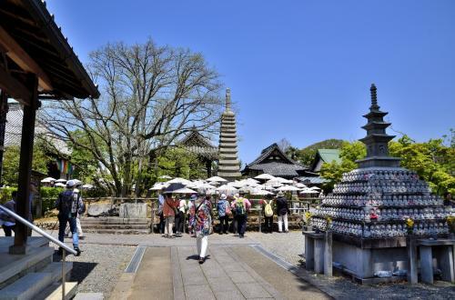 境内<br />牡丹の廻廊を抜けると正面に十三重石塔、その左に空海が手植えしたとされる菩提樹、その奥に鐘楼などが見渡せます。<br />手前左には地蔵堂が佇み、右側にあるのは地蔵塔です。<br />