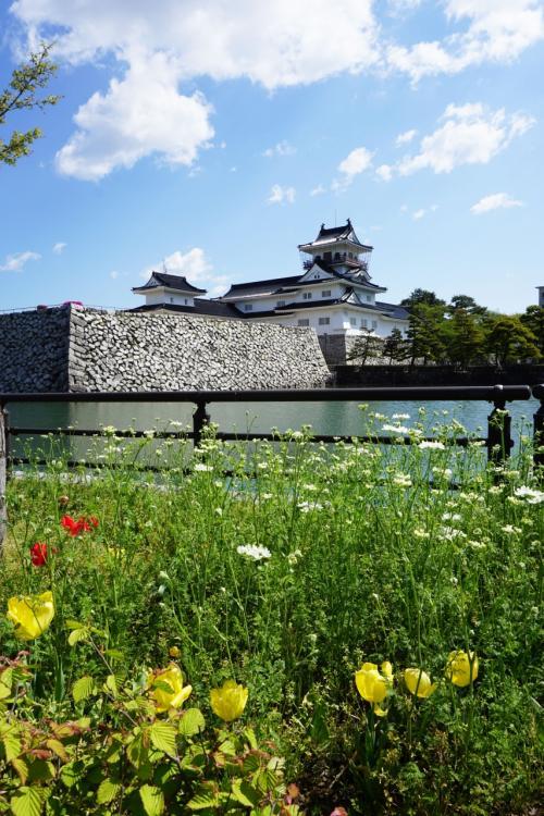 城の周りにある堀割りにはたくさんの金魚が放たれ、堀の周囲には四季の花が咲き乱れている。