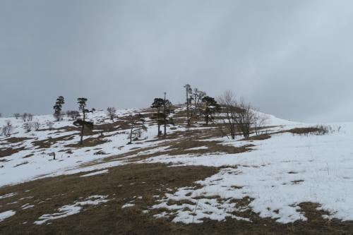 先ほどまで滑ったコッタ2,155m(裏側)です。雪がない・・・