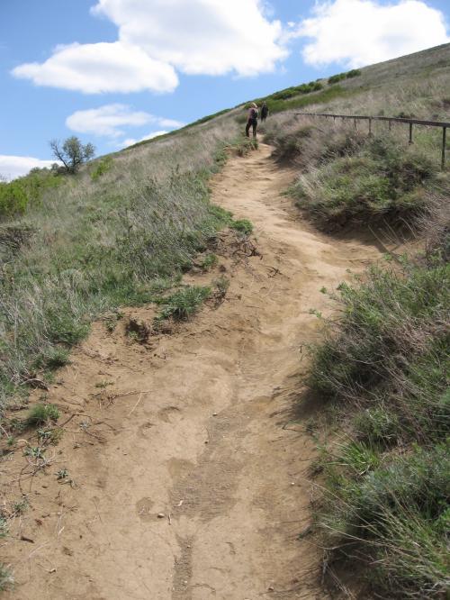 道は概ねこんな感じで滑り放題。<br />ものすごく怖くて、疲労度倍増。