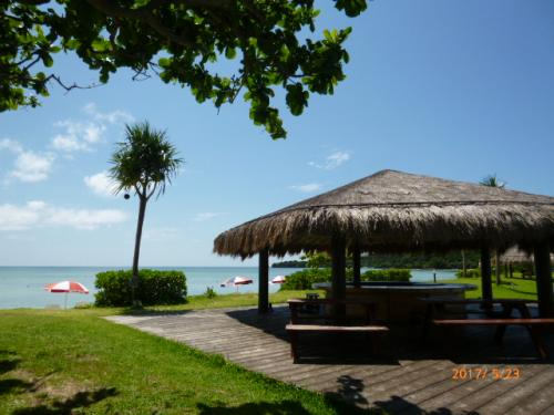 一度見ただけで忘れられない風景~バリ島を彷彿させる~のんびりしてるのよ。。。