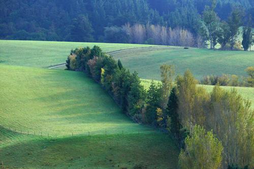 牧草地なのでしょう。羊の姿は見えませんでしたが牧歌的な風景です。
