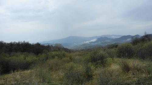 1,620mのゴンボリ峠あたり。