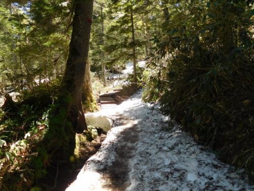 峠道には残雪もある。