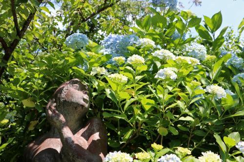 見頃の紫陽花に彫刻の乙女もうっとり・・・