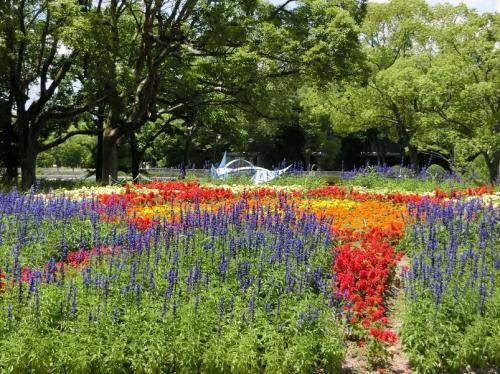 鮮やかな色をした花壇。