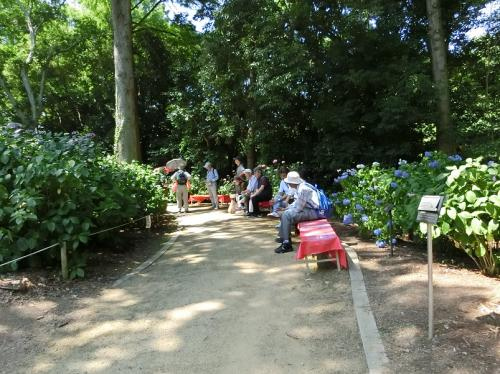 進行方向を見ると、見物の途中、ベンチに腰かけて一休みしている人達の姿がありました。