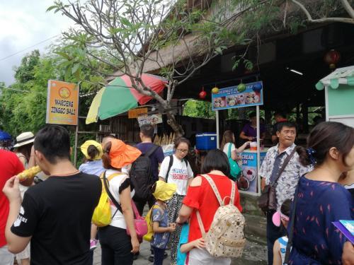 昼食後に訪れた場所はTanah Lotと言うところ。(14時頃)<br />中国人は多いけど、インドネシア人や欧米人も多い。<br />少々暑いので、買い物学習のために麦わら帽子を買ってみる。25ルピー。<br />価格は場所にもよるけど表記の30~50%が適正価格か。<br />予想してたけど、バリもベトナムと同じ末尾のゼロ3つは言わない。100,000IDR(ルピー)は100ということ。<br />