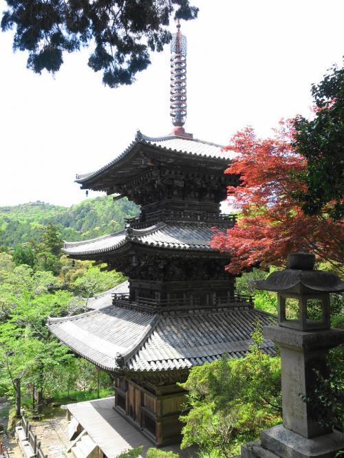 国宝の三重塔。緑に囲まれた美しい三重塔でした。