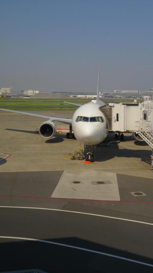 今日の機材はこちら<br />JA658J<br />B767-300
