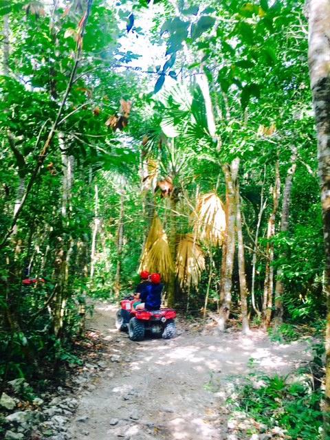 結構なジャングルのオフロードです。
