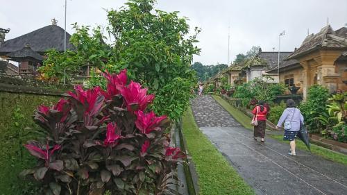 道の両側には、植栽が綺麗に整備されています。