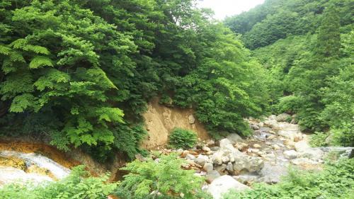 瀬音がいい感じ。野性味ある風景は、秘湯に来たうれしさが倍増!(^ー^)<br />露天風呂は川のすぐ横、ほんのり硫黄の香りがする白濁湯。日によって濁り具合は変わるようです。