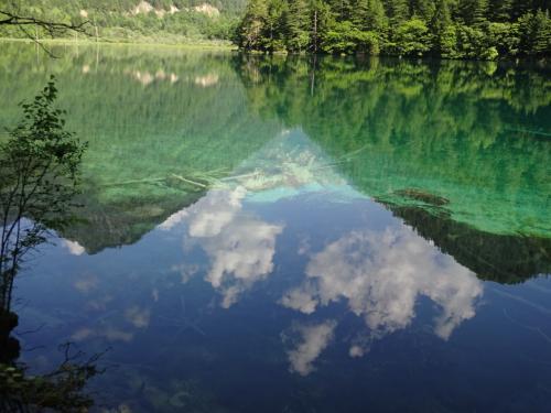 そのうえ、行った日は、ガイドさんもビックリするくらいのいい天気、<br />晴れているだけじゃなく、風が全くないので波一つなく、<br />「鏡池」の名前のとおり、<br />空の青さと、山の緑が、きれいに湖に写っていました。