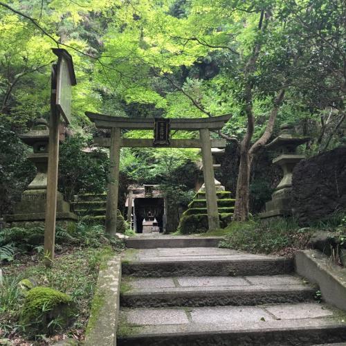 む?どこぞの神社だ?写真撮った記憶がない。