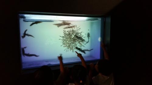 子供たちは触ると画面が変化するので楽しそう。