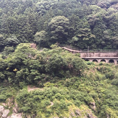 道の駅から見える谷を挟んでの向かい側。写真では分からないけどお猿がたくさん。お猿の子供がキャッキャ言いながら追いかけっことかしてて和んだ。
