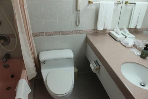 年季の入ったバストイレはアメリカンスタンダードな広さで快適。