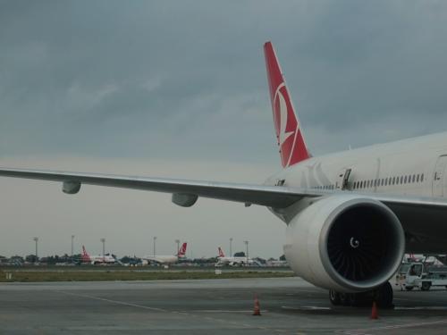 たくさんのトルコ航空の航空機。