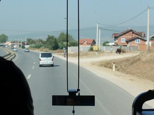 古都プリズレンに向けて、バスは進みます。<br /><br />整備されたいい道。でも路傍には牛の姿も。