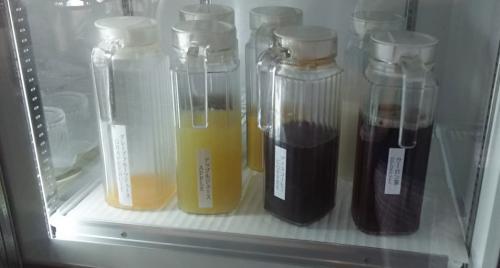ドリンクは冷蔵庫に<br />コーヒーマシンもあります<br />基本的にセルフです