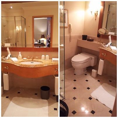 水回り<br />トイレは同居型ですが<br />最新型ではないけど充分快適です。