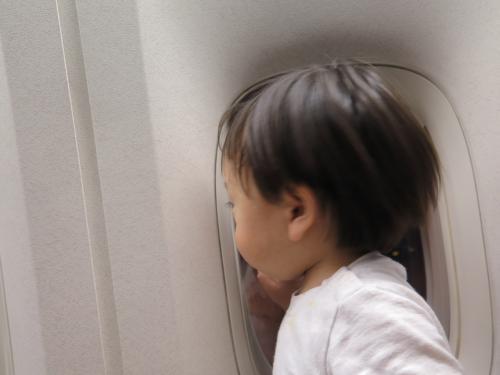 ジナンクン絶好調。<br /><br />が、離陸する頃にはうつらうつら、、、着陸まで寝てました!