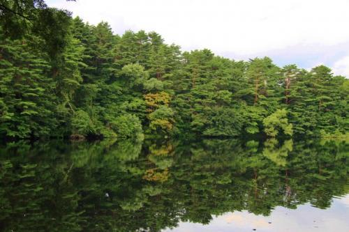 別の角度から見ると水面に木々の緑が映り込んでいます。