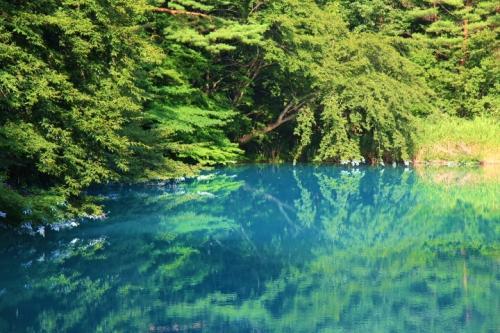 青沼は小さいながら五色沼湖沼群の中でも最も青白色に光っていると言われています。