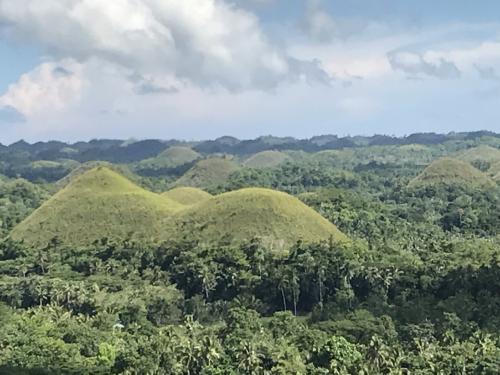 1000以上の円錐系丘が連なり不思議な景色です。