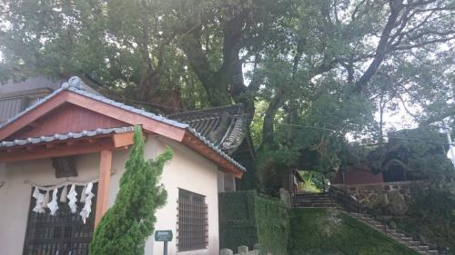 菅原神社の隣の大徳寺跡の公園を挟んだ先にある楠稲荷神社<br />裏に大徳寺の大クスと呼ばれてる木があります<br />樹齢800年位だとか(県内最大級の大きさ)<br />このクスの木から名前が出てるのでしょう