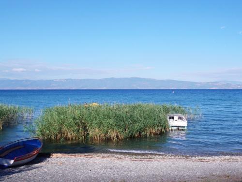 オフリドを出て、湖の東岸沿いに南下します。<br /><br />葦と小舟。なんか絵になりますね。今日もいいお天気です。