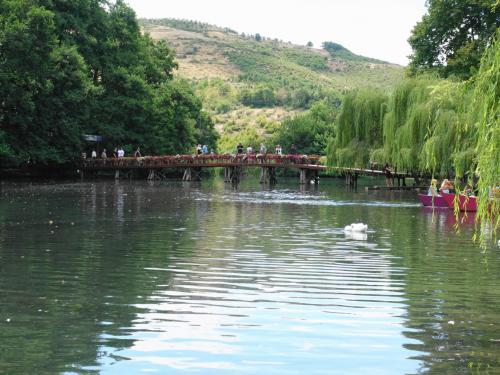 アルバニアに入っても、オフリド湖が続きます。<br /><br />オフリド湖に流れ込む、ドリロンの泉。国立公園になっているようです。<br />家族連れで賑わっていました。