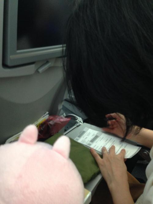 安定飛行に入ったらCAさんが入国カードを配っていたのでニャンちゅうが書きます。<br />ニャンちゅうに書き物をお願いすること多し。いつもありがとうね!