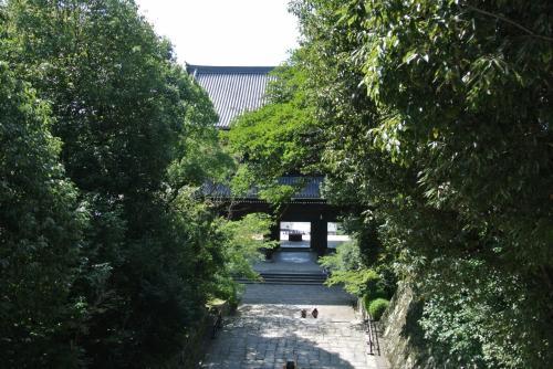 がんばって階段を上ったのですが、<br />知恩院は御影堂が修理中ということで見れなかったので<br />青蓮院門跡に向かいます。