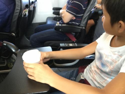 行きの飛行機で、コンソメスープを甥っ子に勧めたら、すっかり気に入って、おかわりしたいとw。<br />いやいや、もう着くから帰りに飲めと言って諦めさせる。
