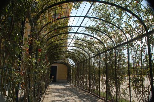花のトンネル。